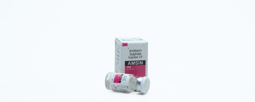 Amsin-500