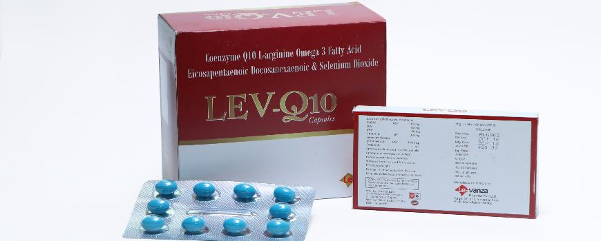 LEV-Q10